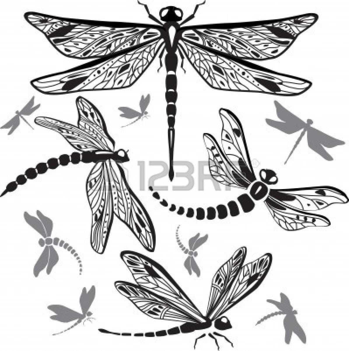 Set Of Decorative Dragonflies Dragonfly Drawing Dragonfly Art Dragonfly Tattoo