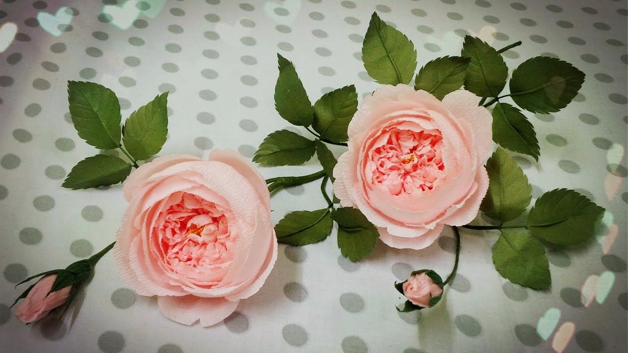 How to make david austin rose from crepe paper craft tutorial how to make david austin rose from crepe paper craft tutorial jeuxipadfo Choice Image