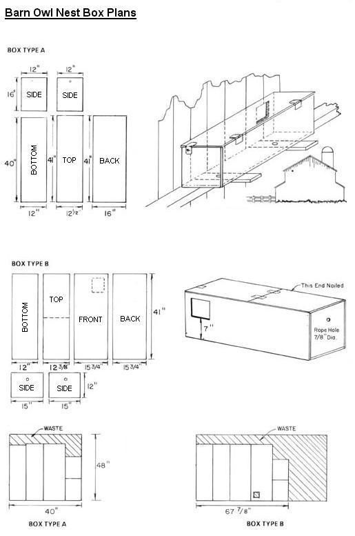 Plans for building your own barn owl box...nest...home