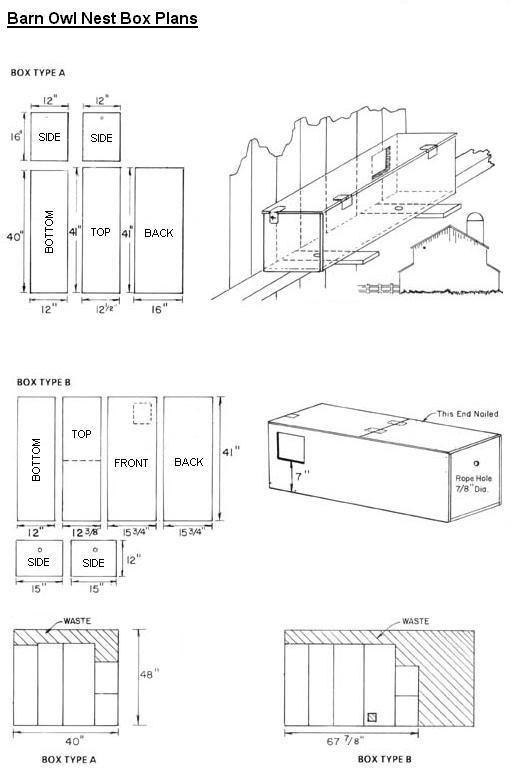 Barn Owl Nestbox Plans Bird House Plans Barn Owl Owl House