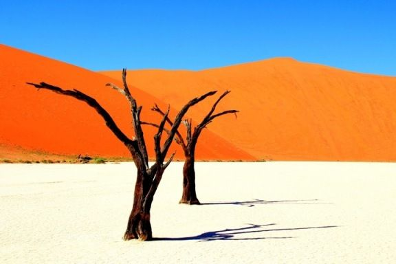 Namib desert, Namibia. One of the most beautiful places I've seen in my life.