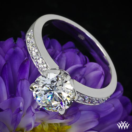 die besten 25 tiffany diamantringe ideen auf pinterest tiffany verlobung tiffany ringe und. Black Bedroom Furniture Sets. Home Design Ideas