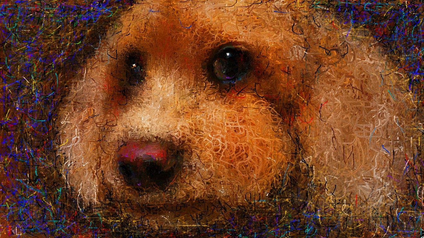 #イラスト #トイプードル #イヌ大好き このところ愛犬ティアモの絵を描いた中の一枚です。  Nicholas McDonald - A Thousand Years http://youtu.be/jBCQpzH8Umk