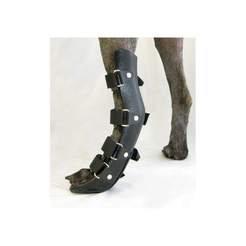 Férula ortopédica para perro. Pata trasera | Pinterest | La patilla ...