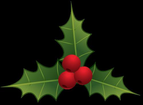 Mistletoe Png Clipart The Best Png Clipart Christmas Leaves Christmas Flowers Disney Paper Dolls