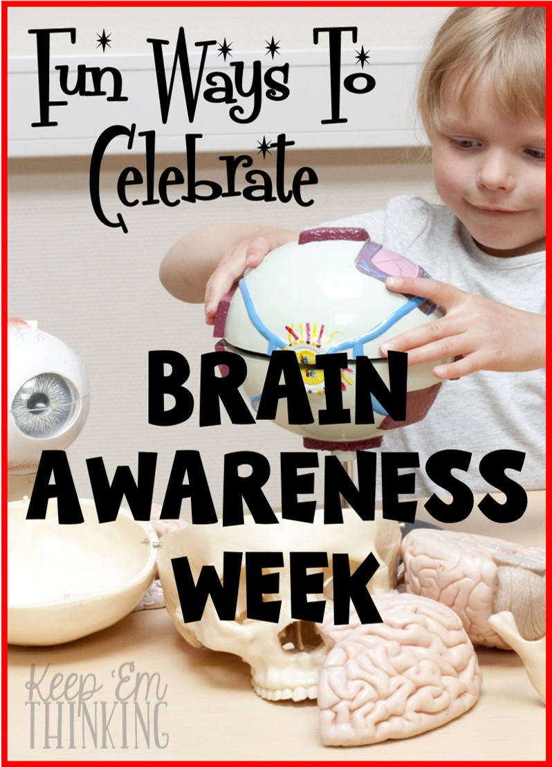 Learn about fun ways to teach your kiddos about their brain and ideas to celebrate Brain Awareness Week in your classroom!