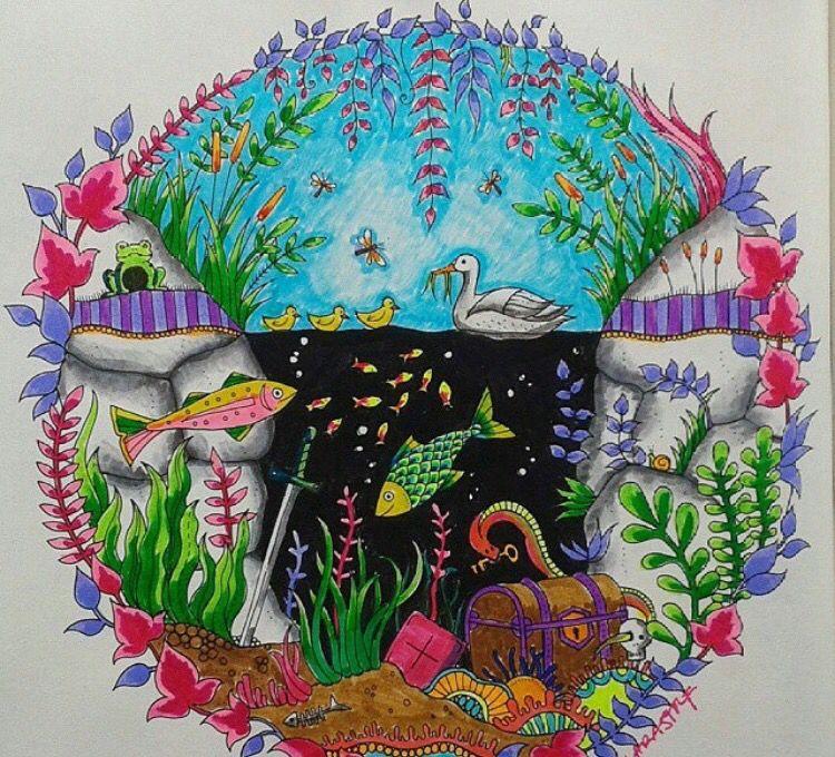 Aquarium Enchanted Forest. Aquário Floresta Encantada. Johanna Basford