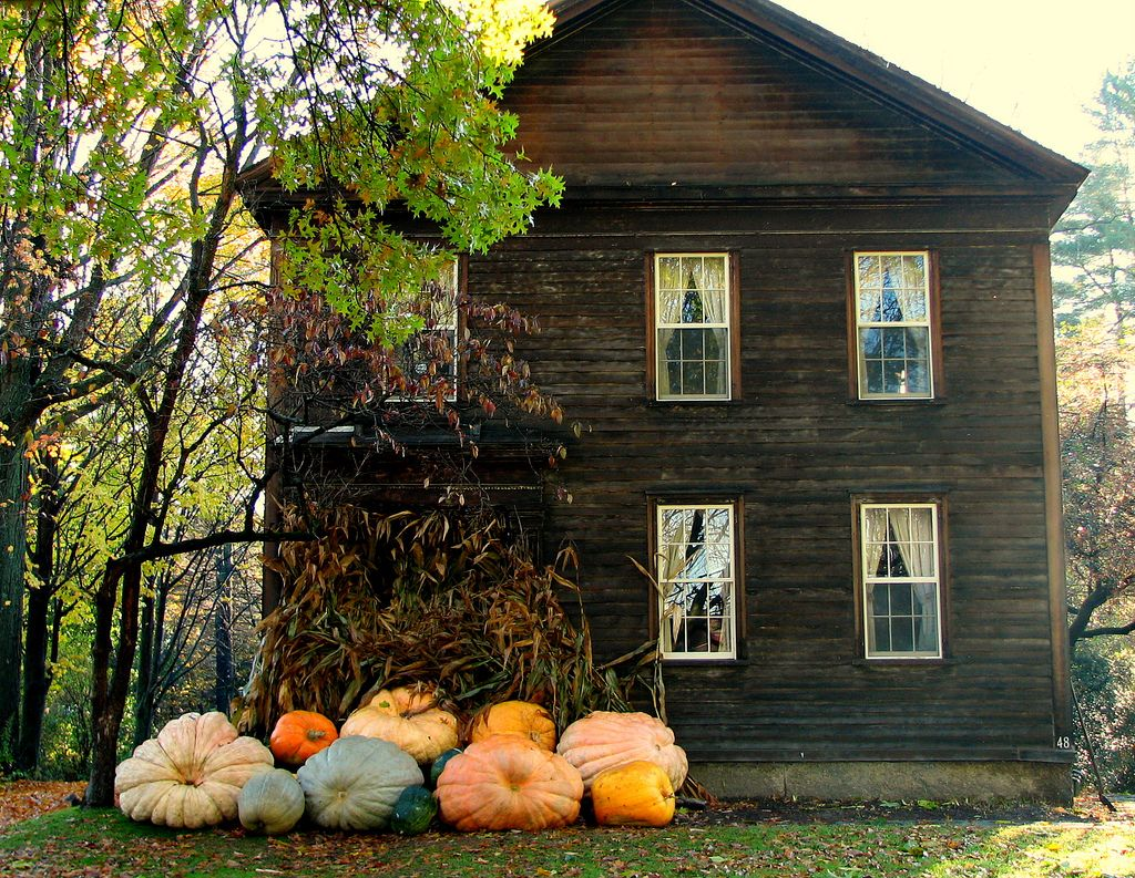 autumn: enormous pumpkins and cabins in the wood
