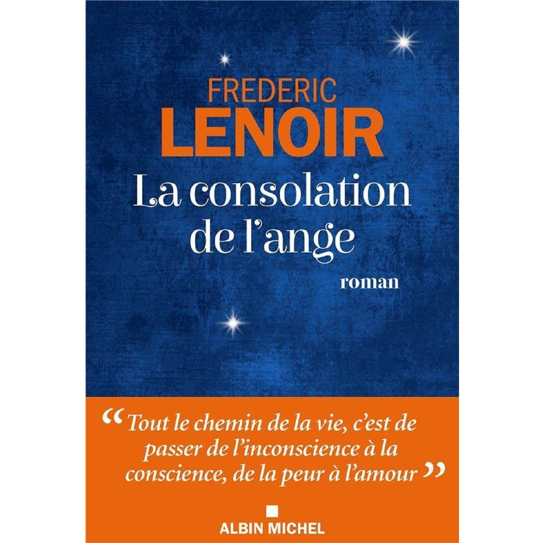 Roman La Consolation De L Ange Frederic Lenoir Le Roman A Prix Carrefour En 2020 Roman Livres A Lire Livre Roman