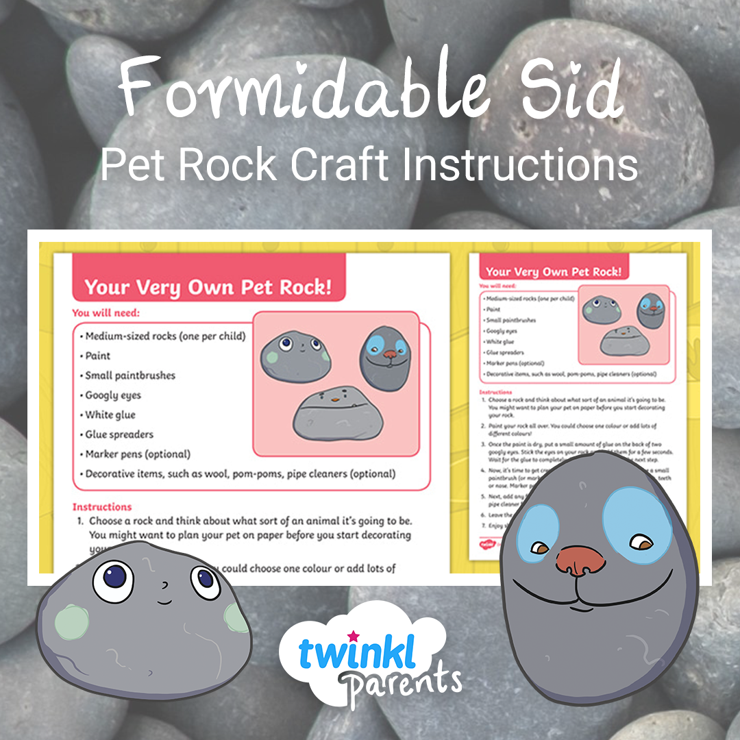 And why not, hey? Everyone needs a pet rock! in 2020 | Pet ...