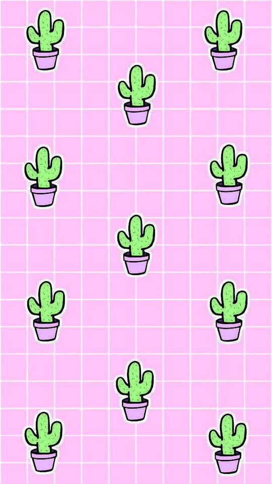 #kaktus wallpaper 20 Cutest Wallpaper Cactus for Your iPhone Wallpaper - Modern