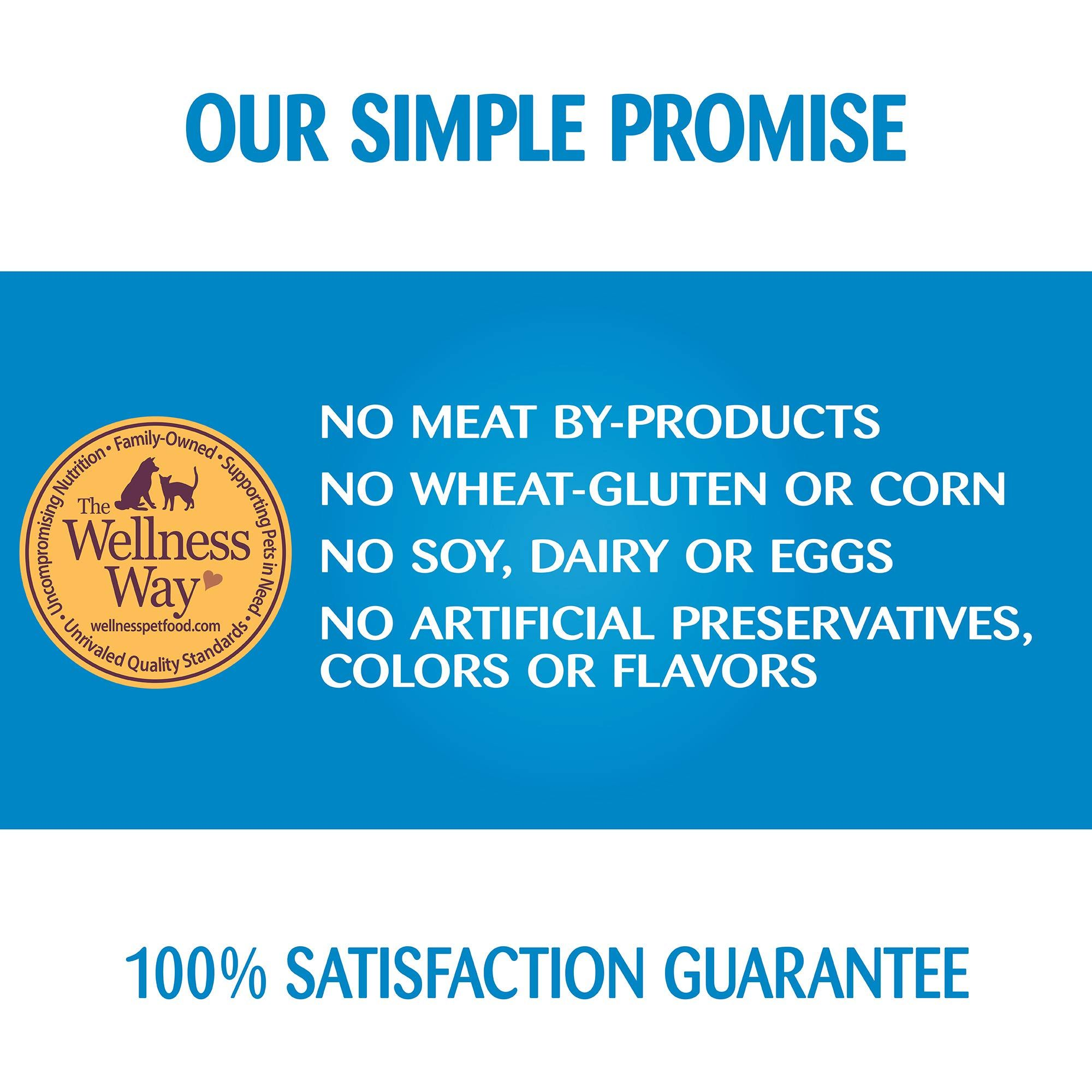 Wellness Simple Natural Limited Ingredient Dry Dog Food Lamb Dog Food Recipes Limited Ingredient Dog Food Dry Dog Food