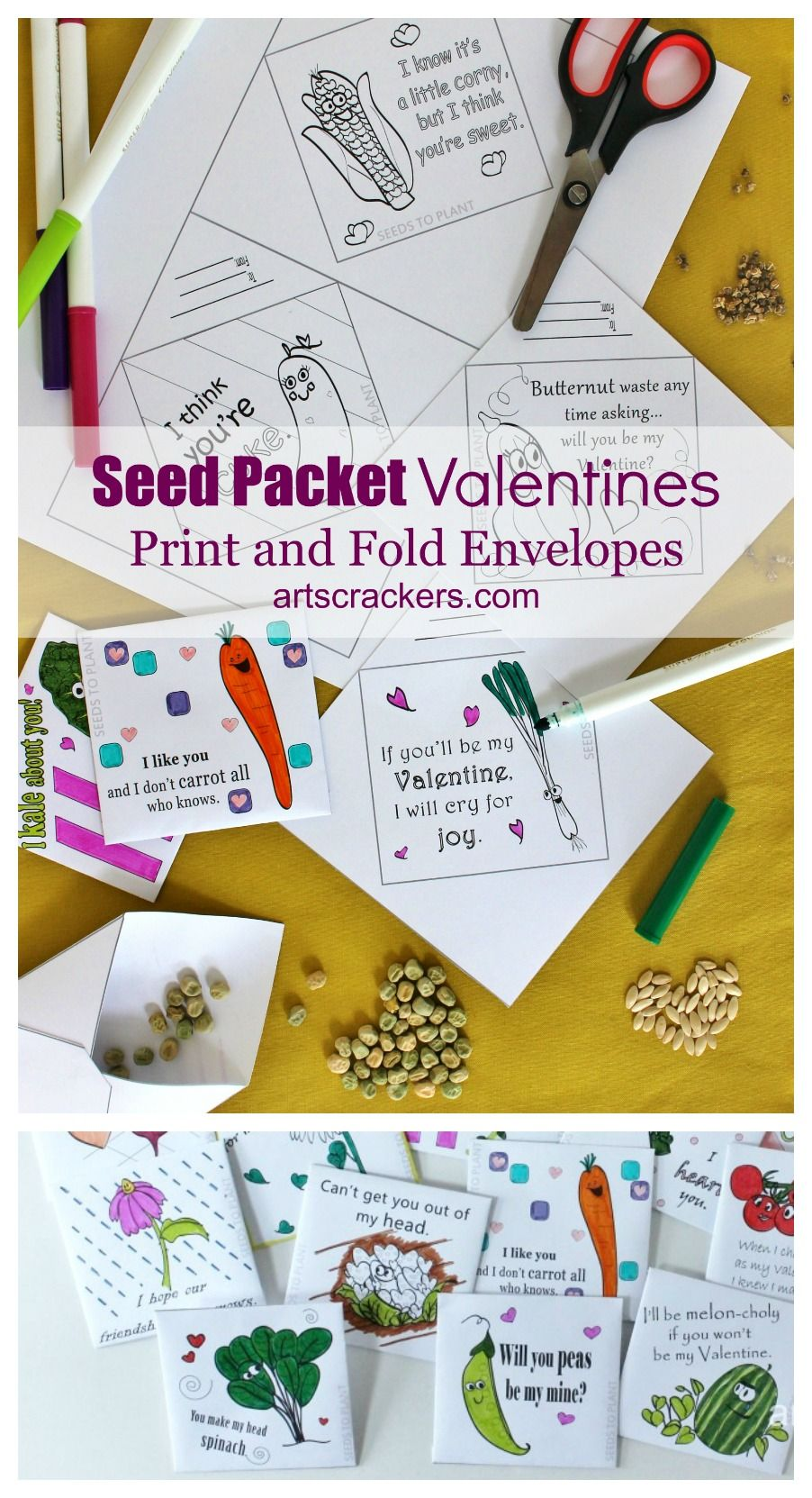 If you are looking for amazing non-candy Valentine's Day ideas, you will love these Seed Packet Valentines. Print free coloring pages or print in color. They're fun and educational Valentines!