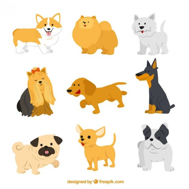 Discover The Best Free Resources Of Dog In 2020 Dog Illustration