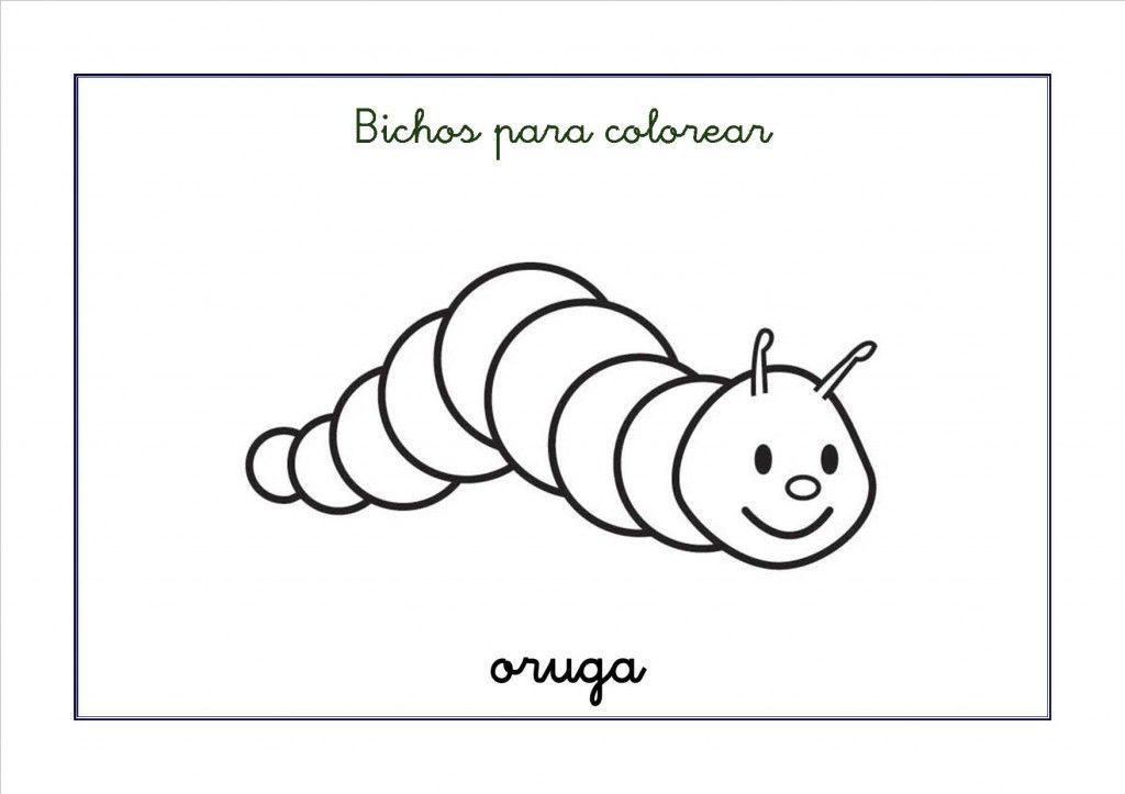 Dibujos De Insectos Para Colorear Para Ninos: Dibujos Para Colorear: Bichos E Insectos