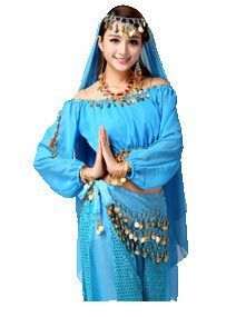 belly danceraladdin princess jasmine costume adultsonly toppants