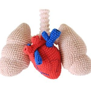 24+ 2 in 1 halloween crochet heart and lungs pattern pdf, amigurumi human anatomy real lungs and heart diy tutorial