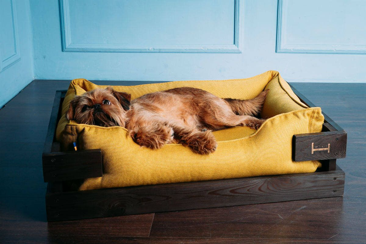 Dog Bed Wooden Frame Mustard Lounger Couch Yellow Pet Etsy Dog Mattresses Mattress Dog Bed Dog Bed