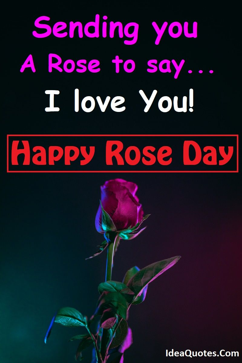 50 Romantic Rose Day Quotes For Boyfriend And Girlfriend Boyfriend Quotes Quote Of The Day Quotes