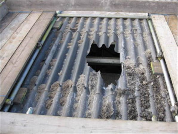 Two Hull firms and a company director have been sentenced for joint safety failings relating to the death of a worker who plummeted more than eight metres through a fragile rooflight while cleaning gutters.