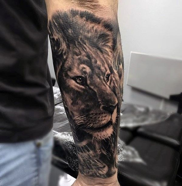 forearm sleeve male lion tattoos lions pinterest