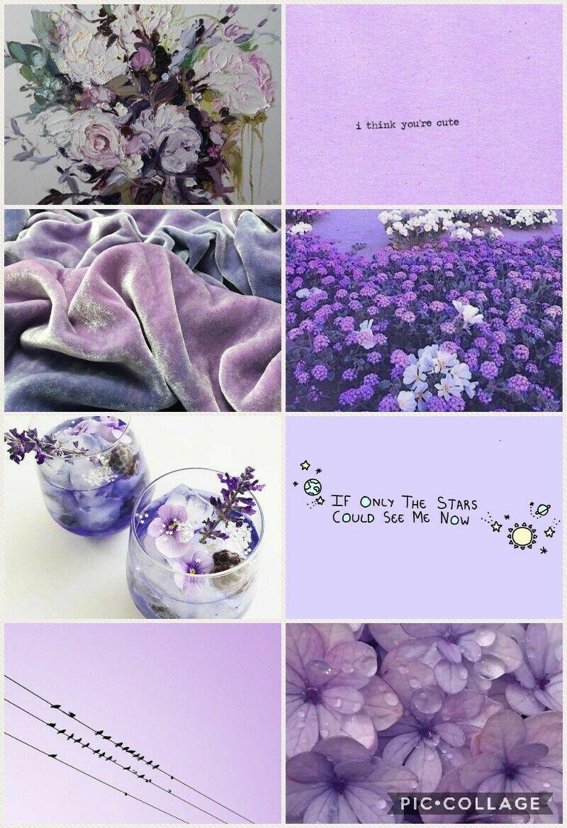 Violeta - violet (With images) | Youre cute, Violet, Pics