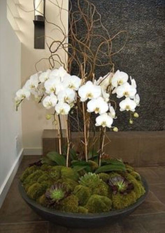 Photo of Orchid DIY Feature Flower Arrangement …