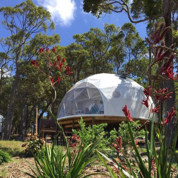 Shelter Domes Leading The Way In Alternative Housing With Images