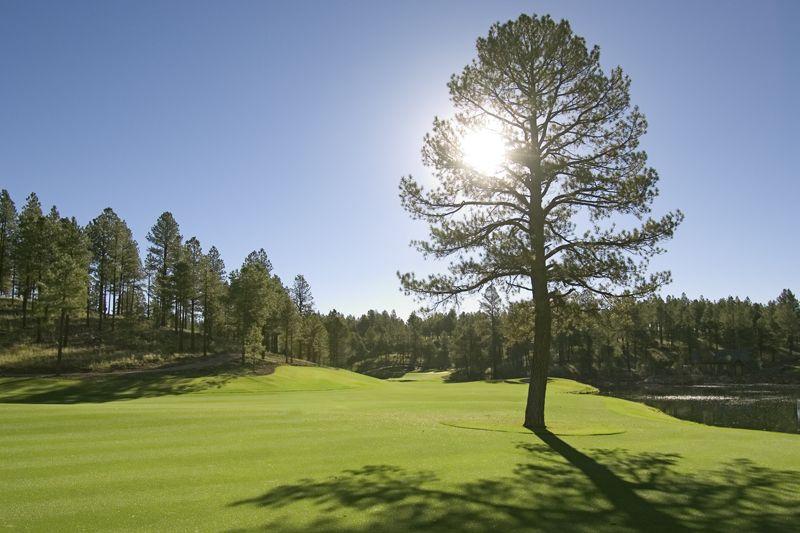 Pine Canyon Golf Course -- Flagstaff, AZ