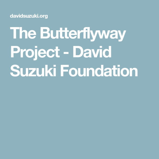 The Butterflyway Project David Suzuki Foundation David Suzuki Foundation Projects