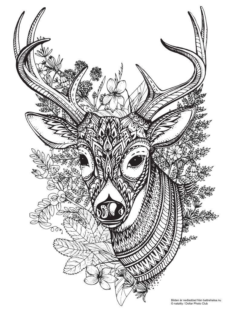 Gratis målarbild för vuxna – färglägg hjorten i lugn och ro | Лошадь ...