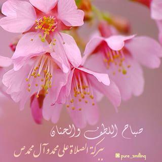 صباح اللطف والحنان Good Morning Flowers Morning Flowers Pure Products
