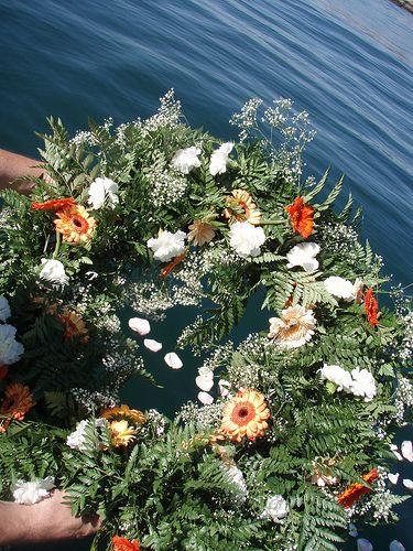 Earth Water Biodegradable Wreath Biodegradable Wreath Biodegradable Products Wreaths Holiday Decor