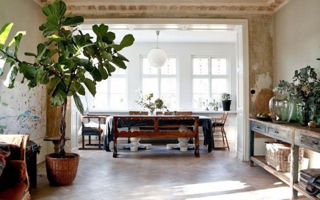 Inspiration du déco  Des plantes, du design, du vert Pinterest