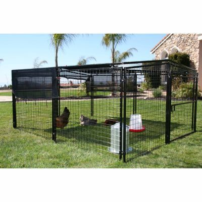 Rugged Ranch Products Universal Welded Wire Pen 12 Chicken Capacity Tractor Supply Co Urban Farming Creature Comforts Tractor Supplies