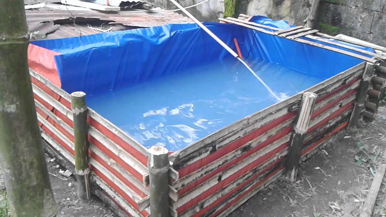 Trapal pond in the philippines or trapond trapond for How to build a koi pond cheap
