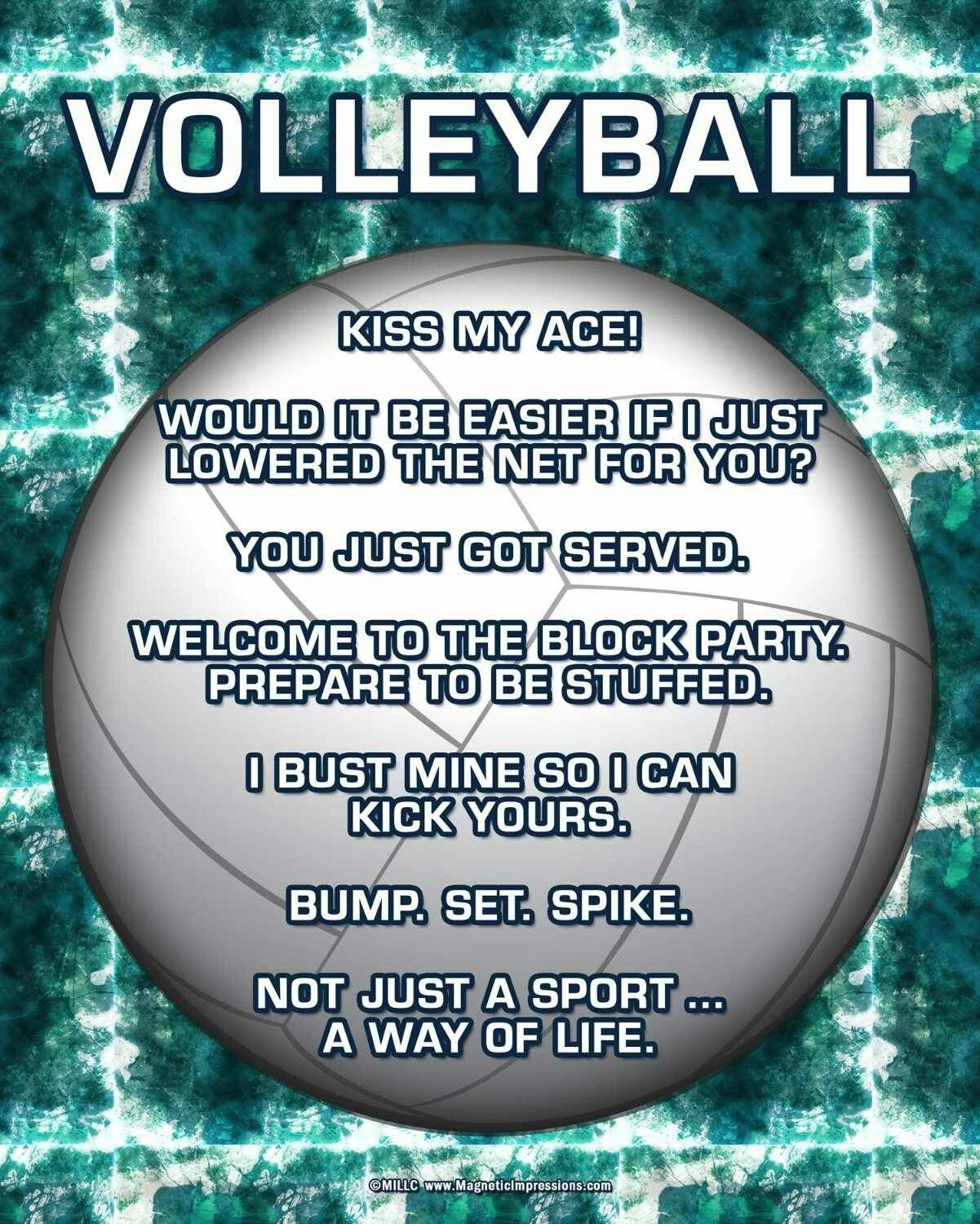 Pin By Anette Garcia On Volleyball 2 Volleyball Workouts Volleyball Humor Volleyball Inspiration