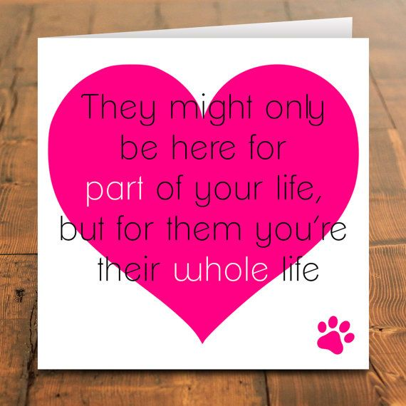 Pet sympathy card, Sorry for your loss, pet death, sad, death ...