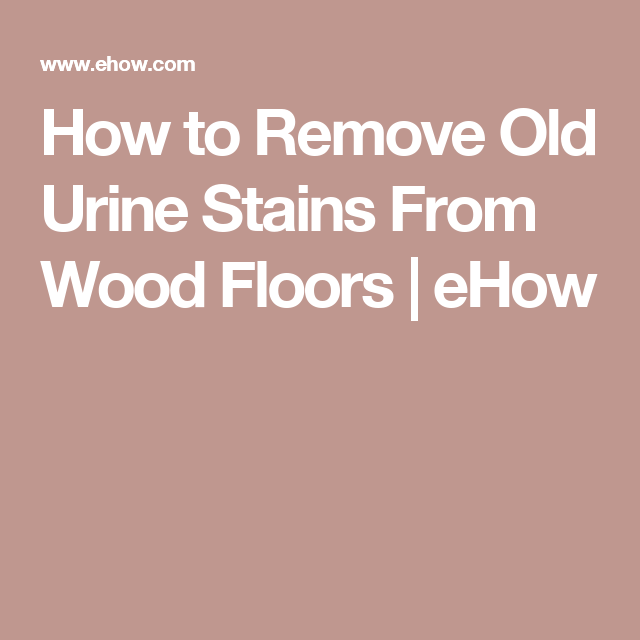 How To Get Rid Of Dog Pee Smell On A Wood Floor