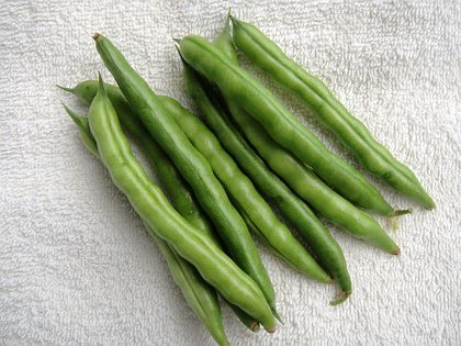 """Greasy Back Bean 