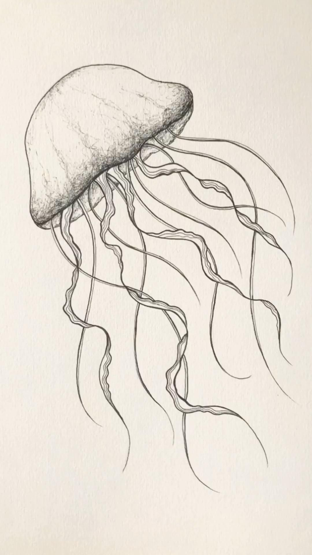 Photo of How to Jellyfish drawing. Ocean animal illustration. Sea draw tattoo