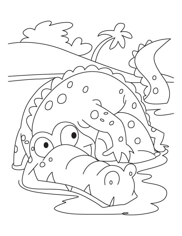 Frightened alligator coloring pages krokodillen for Alligator coloring pages