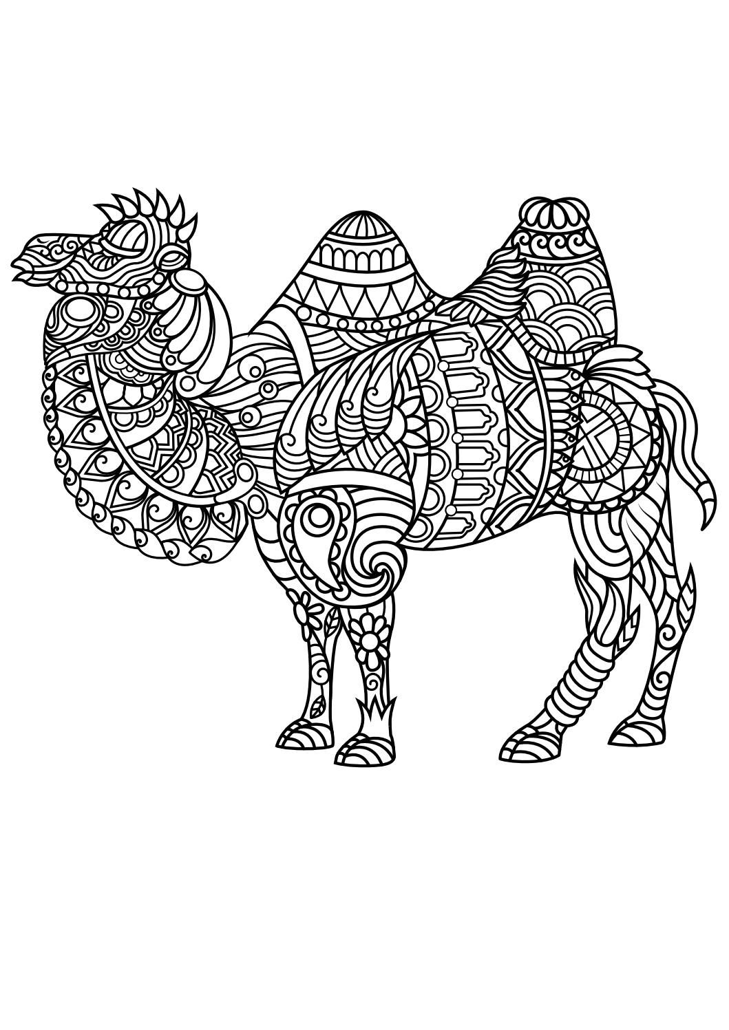 Animal coloring pages pdf | Mandala coloring pages, Adult ... | free printable coloring pages for adults animals