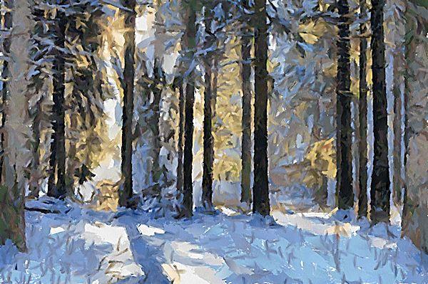 http://dap.mediachance.com/wp-content/uploads/2011/08/Winter2_DAP_Deep-Forest.jpg