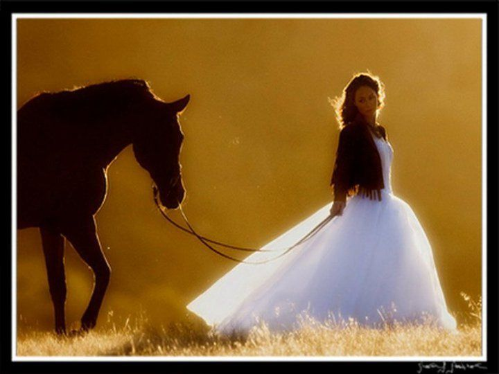 I want a picture of me in my wedding dress with a horse..... hemmmm.... maybe I'll just put my dress on, go visit Jess when she is at the barn then steal her horse for a few... :)