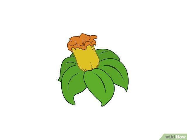26 Gambar Tumbuhan Langka Kartun 9 Cara Untuk Menggambar Bunga Wikihow Download 10 Bunga Paling Langka Di Dunia Yang Waj Di 2020 Lukisan Bunga Gambar Hewan Kartun