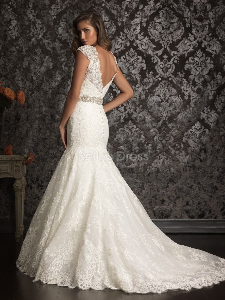 Lace wedding dress v backv back v neck fit n flare chapel for Fit and flare wedding dress body type