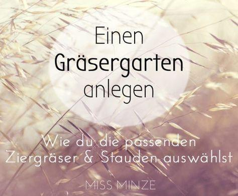 Gartengestaltung mit Gräsern - Mein Pflanzplan für trockene Böden #vorgartenanlegen