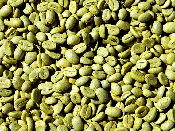 ORGANIC Green Coffee Bean Oil UNREFINED Cold by GardenofEssences