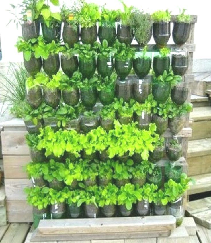 30 Cozy Small Vegetable Garden Ideas On A Budget #Budget # ...